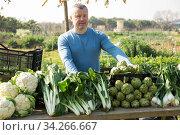 Man standing behind the counter. Стоковое фото, фотограф Яков Филимонов / Фотобанк Лори