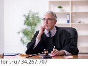 Old male judge working in courthouse. Стоковое фото, фотограф Elnur / Фотобанк Лори
