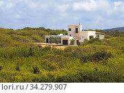 Typical white house of Formentera. Migjorn beach, Formentera island, Balears Islands, Spain. Стоковое фото, фотограф Sergi Reboredo / age Fotostock / Фотобанк Лори