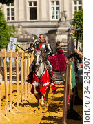 Man dressed as medieval knight riding Arab mare, utting lettuce with sword. Ommegang religious and historical pageant procession, Brussels, Belgium. June 2019. Стоковое фото, фотограф Kristel Richard / Nature Picture Library / Фотобанк Лори