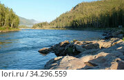 Mrning video of mountain Altai landscape with river Katun and boulders on foreground and forest on the far bank. Стоковое видео, видеограф Serg Zastavkin / Фотобанк Лори