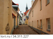 Spring morning city and an interesting walk in the historical part of Tallinn, narrow streets in the Old Town. Стоковое фото, фотограф Zoonar.com/Sergei Aleliukhin / easy Fotostock / Фотобанк Лори