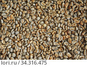 Texture background of green unroasted coffee beans. Стоковое фото, фотограф Кристина Сорокина / Фотобанк Лори