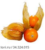 Physalis peruviana ripe fruits isolated on white. Стоковое фото, фотограф Яков Филимонов / Фотобанк Лори