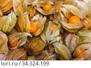 Cape gooseberry physalis on wooden background. Стоковое фото, фотограф Яков Филимонов / Фотобанк Лори