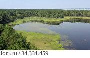Купить «Aerial video of forest boggy lake in the Karakansky pine forest near the shore of the Ob reservoir.», видеоролик № 34331459, снято 19 июля 2020 г. (c) Serg Zastavkin / Фотобанк Лори