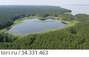 Купить «Aerial video of forest boggy lake in the Karakansky pine forest near the shore of the Ob reservoir.», видеоролик № 34331463, снято 25 июля 2020 г. (c) Serg Zastavkin / Фотобанк Лори