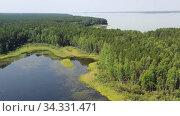 Купить «Aerial video of forest boggy lake in the Karakansky pine forest near the shore of the Ob reservoir.», видеоролик № 34331471, снято 25 июля 2020 г. (c) Serg Zastavkin / Фотобанк Лори
