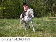 Купить «Little girl in pink rides a white horse breed Orlov trotter», фото № 34343499, снято 30 мая 2020 г. (c) EugeneSergeev / Фотобанк Лори
