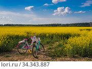 Велосипед в рапсовом поле. Редакционное фото, фотограф Литвяк Игорь / Фотобанк Лори