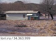 Flooding in Winkelman Arizona, USA. 1993. Стоковое фото, фотограф John Cancalosi / Nature Picture Library / Фотобанк Лори