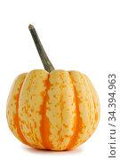 One striped pumpkin. Стоковое фото, фотограф Иван Михайлов / Фотобанк Лори