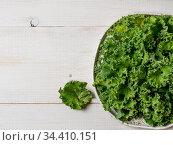 Kale leaves in bowl, copy space, top view. Стоковое фото, фотограф Ольга Сергеева / Фотобанк Лори