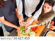 Gruppe Studenten beim gemeinsamen Salat zubereiten in der Küche. Стоковое фото, фотограф Zoonar.com/Robert Kneschke / age Fotostock / Фотобанк Лори
