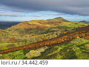 Caer Caradoc Hill viewed from Hope Bowdler Hill near Church Stretton and the Long Mynd Shropshire Hills UK November 2019. Стоковое фото, фотограф Alan Williams / Nature Picture Library / Фотобанк Лори