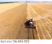 Grain harvester driving on golden wheat field, front view, harvesting yellow wheat at summer. Стоковое фото, фотограф Кекяляйнен Андрей / Фотобанк Лори