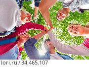 Gruppe Freunde beim High Five geben im Sommer in der Natur. Стоковое фото, фотограф Zoonar.com/Robert Kneschke / age Fotostock / Фотобанк Лори