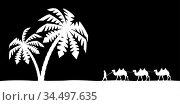 Man on the camel in palm trees. Стоковая иллюстрация, иллюстратор Сергей Антипенков / Фотобанк Лори