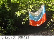 Флаг Российской Федерации. Стоковое фото, фотограф Марина Володько / Фотобанк Лори