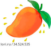 Watercolor style illustration of a mango, a juicy tropical stone fruit... Стоковое фото, фотограф Zoonar.com/patrimonio designs limited / easy Fotostock / Фотобанк Лори