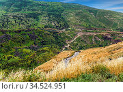 Spring blooming Golan Heights - mountain plateau of volcanic origin... Стоковое фото, фотограф Zoonar.com/kavram / easy Fotostock / Фотобанк Лори