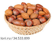 Wicker basket with hazelnuts walnuts almonds and pecan nuts for Christmas... Стоковое фото, фотограф Zoonar.com/Aleksandr Volkov / easy Fotostock / Фотобанк Лори