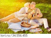 Frau gibt einem alten Mann einen Kuss beim Picknick in der Natur. Стоковое фото, фотограф Zoonar.com/Robert Kneschke / age Fotostock / Фотобанк Лори