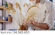 woman arranging dried flowers in vase at home. Стоковое видео, видеограф Syda Productions / Фотобанк Лори