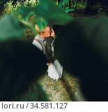 Beautiful wedding couple posing in a forest. Стоковое фото, фотограф Zoonar.com/Oleksii Hrecheniuk / age Fotostock / Фотобанк Лори