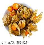 Physalis peruviana fruit closeup. Стоковое фото, фотограф Яков Филимонов / Фотобанк Лори