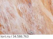 Natural background of seamless aged light wood. Стоковое фото, фотограф Яков Филимонов / Фотобанк Лори