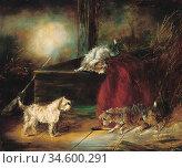 Armfield George - Terriers Ratting - British School - 19th Century. Стоковое фото, фотограф Artepics / age Fotostock / Фотобанк Лори
