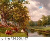 Baker of Leamington Thomas - Cattle Resting Beside a River in a Wooded... Стоковое фото, фотограф Artepics / age Fotostock / Фотобанк Лори