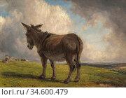 Baker of Leamington Thomas - Donkey in a Landscape - British School... Стоковое фото, фотограф Artepics / age Fotostock / Фотобанк Лори