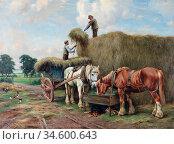Barker Wright - Drinkende Paarden Na Het Hooien - British School - ... Стоковое фото, фотограф Artepics / age Fotostock / Фотобанк Лори