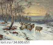 Barker Wright - a Shepherd with His Flock in a Winter Landscape - ... Стоковое фото, фотограф Artepics / age Fotostock / Фотобанк Лори