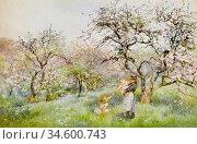 Barton Rose Maynard - Spring - British School - 19th Century. Стоковое фото, фотограф Artepics / age Fotostock / Фотобанк Лори