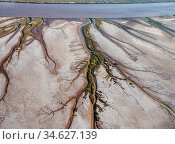Patterns in the tidal  flats of the Colorado River Delta where the delta is swept by tidal encroachment from the Gulf of California. Receding tide causes... Стоковое фото, фотограф Jack Dykinga / Nature Picture Library / Фотобанк Лори