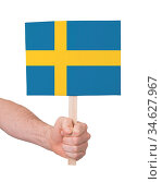 Hand holding small card, isolated on white - Flag of Sweden. Стоковое фото, фотограф Zoonar.com/Micha Klootwijk / age Fotostock / Фотобанк Лори