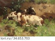 Gauld David - Ayrshire Calves - British School - 19th Century. Стоковое фото, фотограф Artepics / age Fotostock / Фотобанк Лори