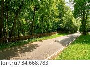 Gerade leere Straße durch grüne Landschaft an einem sonnigen Tag. Стоковое фото, фотограф Zoonar.com/Robert Kneschke / age Fotostock / Фотобанк Лори