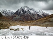 Hiker in the mountains. Редакционное фото, фотограф Вита Фортуна / Фотобанк Лори