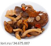 Assorted pickled mushrooms with onions and parsley. Стоковое фото, фотограф Яков Филимонов / Фотобанк Лори