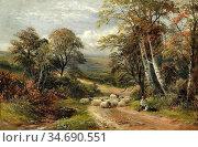 Turner George - a Derbyshire Lane 1 - British School - 19th Century. Стоковое фото, фотограф Artepics / age Fotostock / Фотобанк Лори