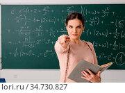 Female teacher standing in front of chalkboard. Стоковое фото, фотограф Zoonar.com/Elnur Amikishiyev / easy Fotostock / Фотобанк Лори