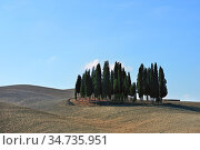 Landscape of autumn field in Tuscany, Italy (2012 год). Стоковое фото, фотограф Знаменский Олег / Фотобанк Лори