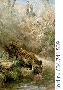 Swan Cuthbert Edmund - the Tiger Hunt - British School - 19th Century. Редакционное фото, фотограф Artepics / age Fotostock / Фотобанк Лори