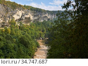 Gorge with a muddy river among wild vegetation. Стоковое фото, фотограф Евгений Харитонов / Фотобанк Лори