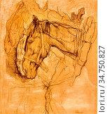 Bruycker Jules De - Paarden - Belgian School - 19th Century. Стоковое фото, фотограф Artepics / age Fotostock / Фотобанк Лори