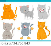 Cartoon Illustration of Cats or Kittens Comic Characters Set. Стоковое фото, фотограф Zoonar.com/Igor Zakowski / easy Fotostock / Фотобанк Лори